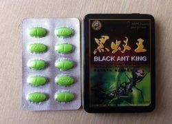 Cường dương Vua kiến đen Black Ant King tại Thanh Hóa
